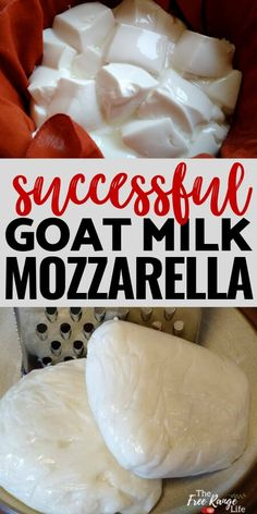 How to Make Goat Milk Mozzarella Successfully! Stop wasting your goat milk and learn to make mozzarella cheese the right way with goat milk. Tips and tricks on making mozzarella with goat milk that works and tastes great! Goat Milk Recipes, Goat Cheese Recipes, Real Food Recipes, Cooking Recipes, Cake Recipes, Make Mozzarella Cheese, Goat Milk Mozzarella Recipe, Homemade Goats Cheese, How To Make Cheese