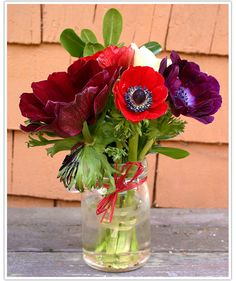 Red and purple anemones in a hand-etched glass vase   Limn & Lovely
