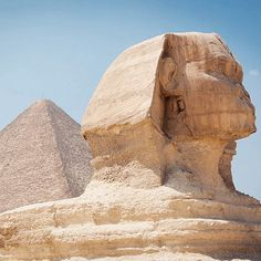 When the #sphinx is so much smaller than you thought!  #pyramid #thegreatpyramid #giza #cairo #egypt #travel #vacation #archeology