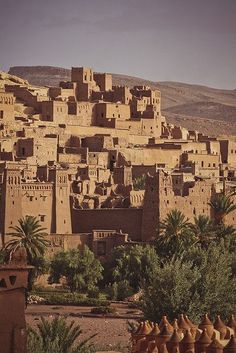 Les excursions —  Riad Jardin secret - Marrakech