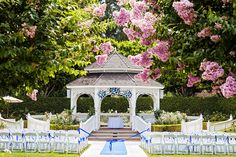 Disneyland's Rose Court Garden looks absolutely beautiful!