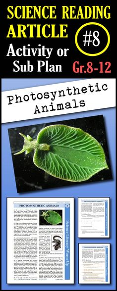 In this article, students will read about two animals (green sea slug and yellow spotted salamander) that can photosynthesize due to symbiotic relationships with algae. This is a great in class activity, homework assignment, weekly science reading assignment, sub plan or in school suspension plan. Use this to save time looking for engaging and appropriate articles with questions!