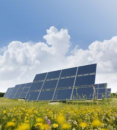 have a look at this great solar green energy site-http://greenenergy-mbxrsyk7.yourpopularcbreviews.com