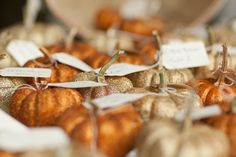 wedding | Tumblr, mini pumpkin favors and seating cards