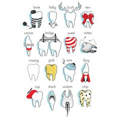 Dental Definitions