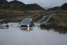 wading.JPG 432×288 pixels