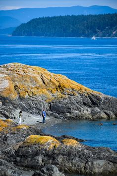 San Juan Islands, Washington, USA - Just 65 miles north of Seattle, the San Juan Islands straddle the border between the US and Canada