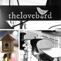 local cafes in armadale, melbourne - lovebird Melbourne Coffee, Store Fronts, Creative, Outdoor Decor, Fashion Design, Home Decor, Cafes, Decoration Home, Room Decor