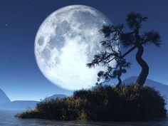 Bela Imagem da Lua Cheia Wallpaper