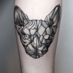 half geometric cat