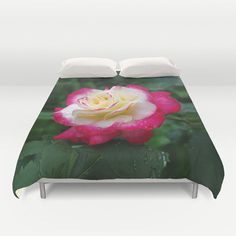 Double Delight rose duvet cover, nature photograph, old fashioned garden flower, floral home decor, bedroom decor, bedding, red cream  rose by RVJamesDesigns on Etsy