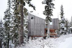 Gallery of Alpine Cabin / Scott & Scott Architects - 1