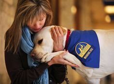Service Dog Currently looking for Dogs and Cats that have some great talents.  Not just talents as in Dog Tricks, but talents as Therapy Dogs, Service Dogs, Military Dogs. . .and the Cats. . .well any cat that can Act, we're interested. Just have a Story?  That's fine too.  We'd love to hear it.  http://thecaninecommunityreportersnews.com/submit-your-story/