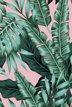XL Posters – Hustle Living - Healty fitness home cleaning Leaves Wallpaper Iphone, Plant Wallpaper, Tropical Wallpaper, Summer Wallpaper, Love Wallpaper, Screen Wallpaper, Pattern Wallpaper, Palm Leaf Wallpaper, Aesthetic Backgrounds