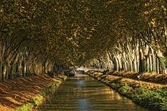 Le Canal de Brienne, qui relie la Garonne au Canal des deux mers à Toulouse, à l'automne © D. Viet #visiteztoulouse