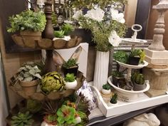 Olathe Home Décor provides Mirrors, Home Decor & Gifts in Olathe, Kansas Santa Fe, Spring Home Decor, Decoration, Showroom, Kansas, Mirrors, Succulents, Plants, Gifts