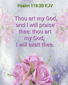 Psalm 118:28 (KJV)