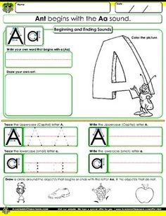 parts of a plant worksheet for first grade printable worksheets science pinterest. Black Bedroom Furniture Sets. Home Design Ideas