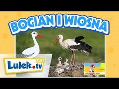 Porozmawiajmy o wiośnie - zbiór materiałów edukacyjnych dla dzieci - Dzieciaki w domu Kids And Parenting, Montessori, Education, Film, Youtube, Animals, Inspiration, Therapy, Movie