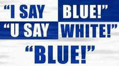 Wildcats Basketball, Kentucky Basketball, University Of Kentucky, Kentucky Wildcats, Go Big Blue, Blue And White, Saints, Patio, Instagram