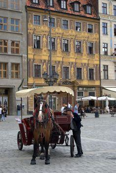 Wroclaw, Poland | THE MOSAIC FINGERPRINT