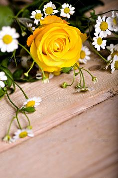 Realistic Graphic DOWNLOAD (.ai, .psd) :: http://jquery.re/pinterest-itmid-1006902692i.html ... bunch of spring flowers ...  Ranunculus, arrangement, beautiful, blossom, bouquet, bunch, color, flowers, freshness, gerbera, gift, mums, nature, objects, rose, spring, table  ... Realistic Photo Graphic Print Obejct Business Web Elements Illustration Design Templates ... DOWNLOAD :: http://jquery.re/pinterest-itmid-1006902692i.html