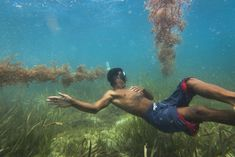 A seaweed farmer inspects his 'crops' in the shallow waters nearby his stilt… Shallow, Seaweed, Farmer, Philippines, Most Beautiful