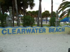 Speed dating clearwater florida