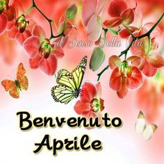 Aprile immagine 1 Good Morning Good Night, Lily, Messages, Top, Party, Tree Designs, March, Spring, Hipster Stuff
