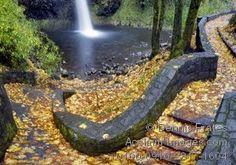 Horsetail Falls, Oregon - Google Search