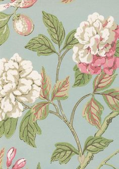 Emperors Garden Wallpaper Climbing floral in pinks and white with birds on an aqua background