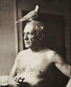 Put a bird on it, Picasso! (Pablo Picasso by James Lord) Pablo Picasso, Art Picasso, Picasso Dove, Georges Braque, Famous Artists, Great Artists, Cubist Movement, Foto Portrait, Spanish Painters