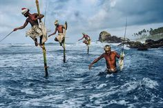 Fishermen on stilts in Weligama on the south coast of Sri Lanka (1995)