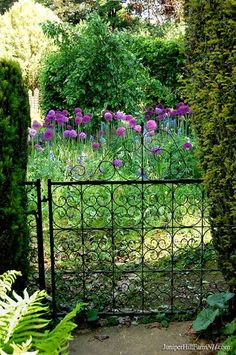Lovely little garden gate at Kiftsgate Court in England.