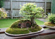 Como fazer um bonsai - http://www.comofazer.org/faca-voce-mesmo/como-fazer-um-bonsai/