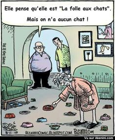 La folle aux chats - Crazy cat lady funny