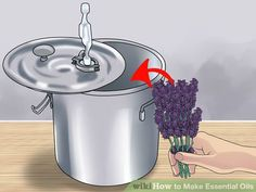 Image titled Make Essential Oils Step 2