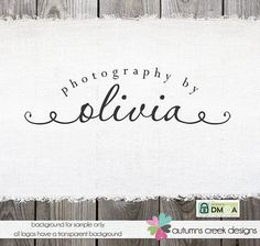 Premade Logo Design - Gorgeous Script with swirls Premade Logo for Photographer Photography logo