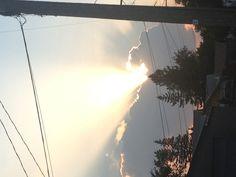 Sunset in Elmwood.