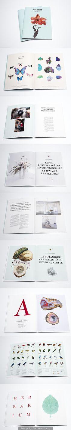Deyrolle magazine - created via http://pinthemall.net