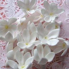 fragrant jasmine