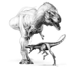 Raptorex shows that T.rex body plan evolved at 100th the size
