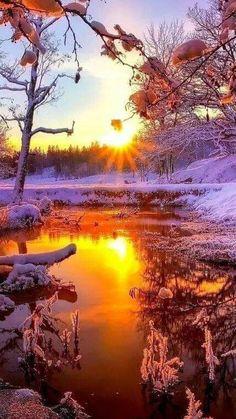 Ideas beautiful landscape winter for 2019 Beautiful Sunset, Beautiful World, Beautiful Places, Outdoor Fotografie, Winter Sunset, Winter Scenes, Nature Pictures, Amazing Nature, Landscape Photography
