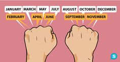 knuckles_months_featured