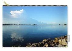 Carry-All Pouch - Florida Panorama