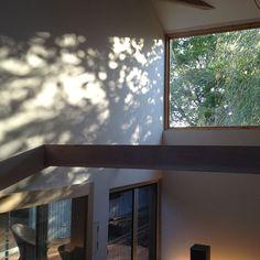 【architectlaboratorymou】さんのInstagramをピンしています。 《#architecture#architecturephotography #architects#lighting #forest #house #villa#mansion #interior #design #livingroom 建築家#富山#設計事務所 #白#反射光#建築 #アーキラボモウ建築設計#デザイン#森#インテリア#家#リビング#木漏れ日》