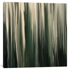 """Wade Logan Greenwood Painting Print on Wrapped Canvas Size: 37"""" H x 37"""" W x 0.75"""" D"""