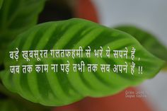 Shayari In Hindi, Golden Leaves, Good Morning Quotes
