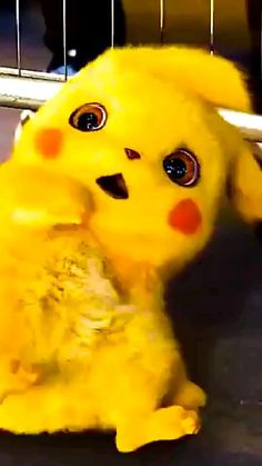 Cute Cartoon Pictures, Baby Animals Pictures, Cute Love Cartoons, Cartoon Pics, Cute Cartoon Wallpapers, Cute Pokemon Pictures, Cute Love Wallpapers, Wallpapers Android, Pikachu Pikachu