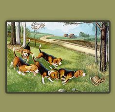 Are you interested in a Beagle? Well, the Beagle is one of the few popular dogs that will adapt much faster to any home. Beagle Hunting, Beagle Hound, Rabbit Hunting, Beagle Art, Beagle Puppies, Hunting Painting, Hunting Art, Deer Hunting, Lemon Beagle Puppy